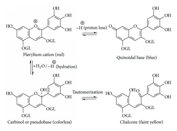 Structure-change-of-anthocyanin-with-pH-in-aqueous-solution_W640